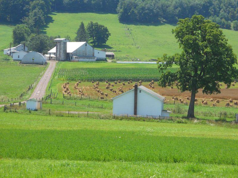 PA farm