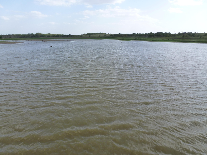Texoma habitat 1