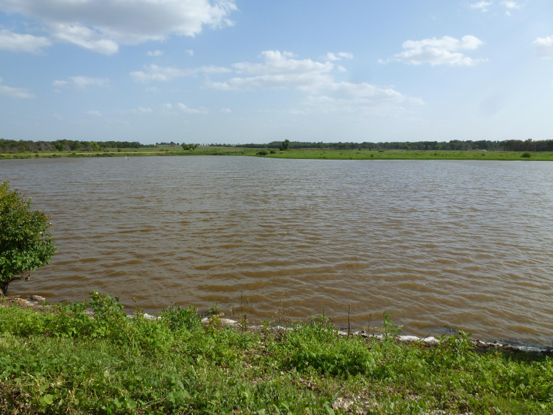 Texoma habitat 2