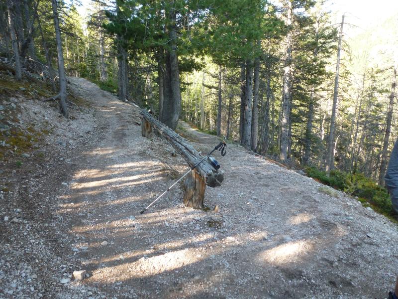 Lost Lake - trail view